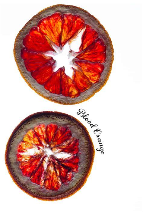 dehydrated citrus wheels diy spoon fork bacon