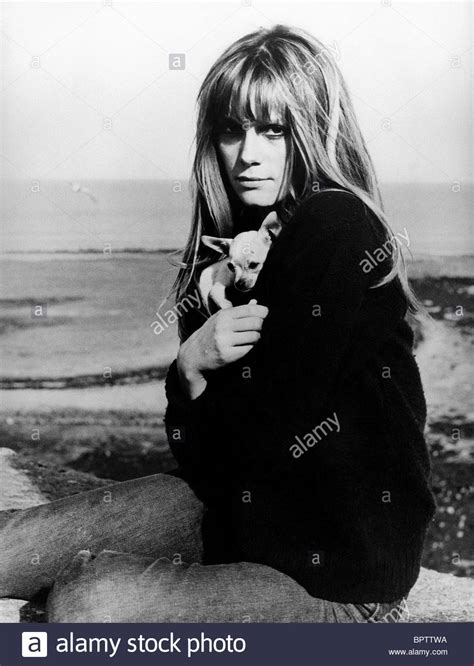 francoise dorleac actress francoise dorleac stock photos francoise dorleac stock