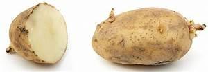 Période Pour Planter Les Pommes De Terre : planter les pommes de terre quand et comment ~ Melissatoandfro.com Idées de Décoration