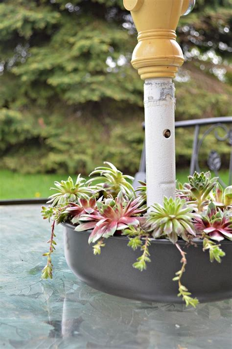 hometalk succulent patio table planter