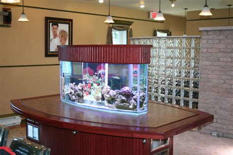 aquariums salle de filtrations viviers commerciaux