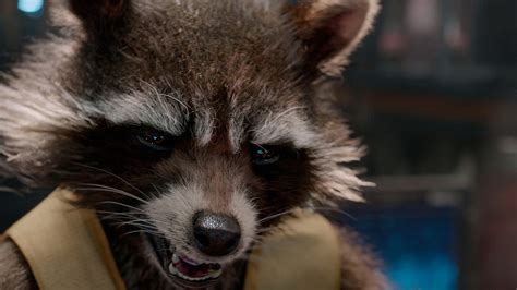 rocket raccoon guardians   galaxy poster
