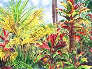 Jenny Floravita's tropical flower paintings, call 925-625-7969