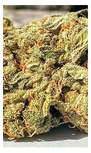 weed, Drugs, Marijuana, 420, Nature, Psychedelic, Plant ...