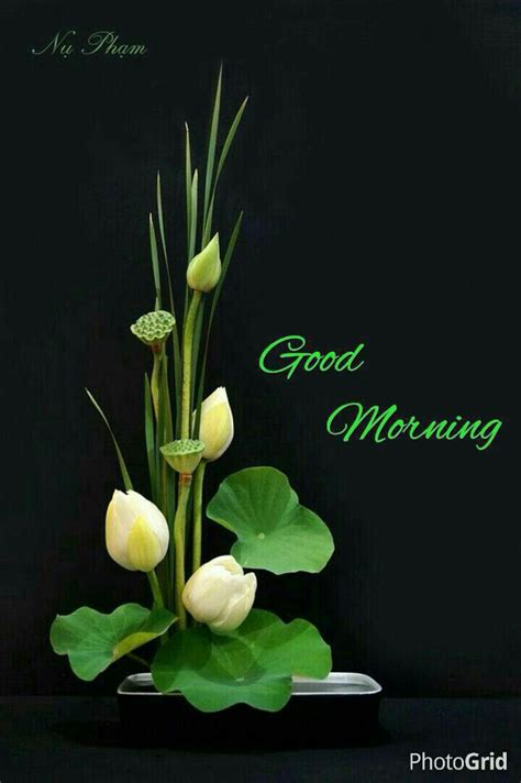 Best 25+ Gd Mrng Ideas On Pinterest  Mrng Wishes, Good