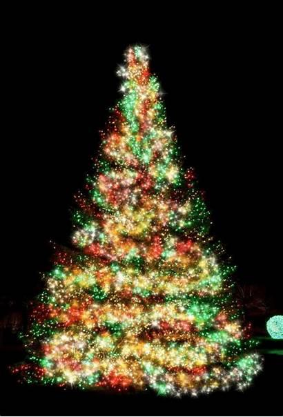 Christmas Tree Merry Sparkling Happy Trees Glitter