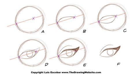 bruce timm eyes female breakdown  drawing website