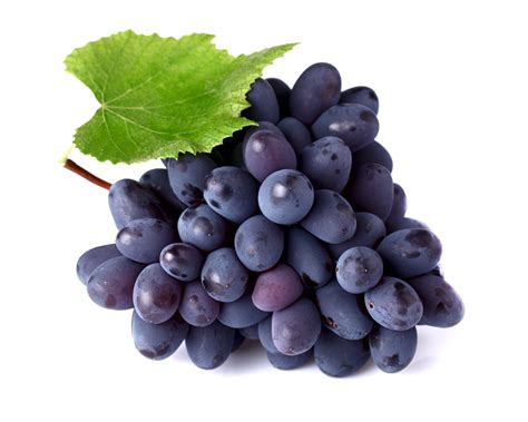 Grapes White Background Images Awb