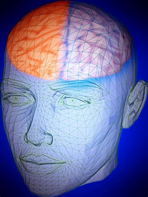 head brain human  image  pixabay