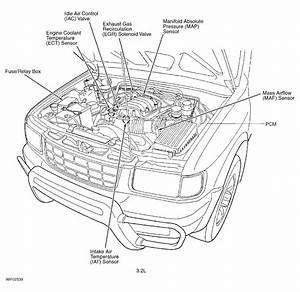 Isuzu Rodeo Spark Plug Diagram