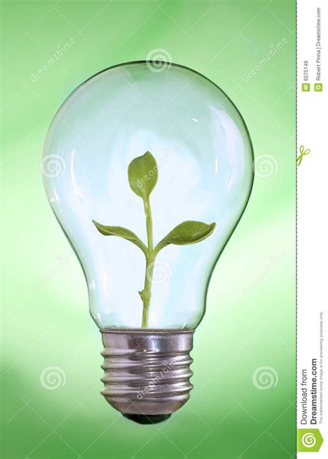green energy light bulb with plant inside royalty free