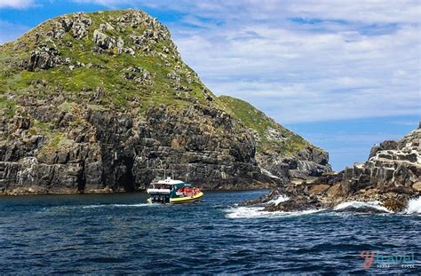 Bruny Island Cruise With Pennicott Wilderness Journeys