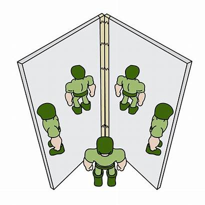 Reflection Mirror Science Plane Clipart Mirrors Experiment