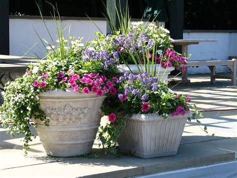 Best 25+ Outdoor Flower Pots Ideas On Pinterest