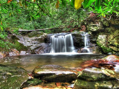 Forest Waterfall Desktop Background Hd Wallpapers 06739 ...