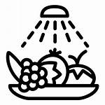Vegetables Wash Icon Pictogram Fruits Hygiene Disinfection