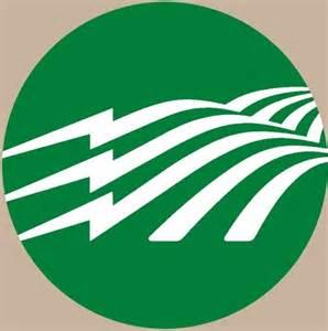 Rural Electric Co-operative Logo