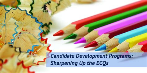 ses development program ecq writing courses careerproplus