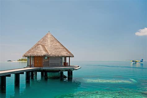haute cuisine dishes enjoy luxury cuisine at the ithaa undersea restaurant in maldives haute d 39 vie