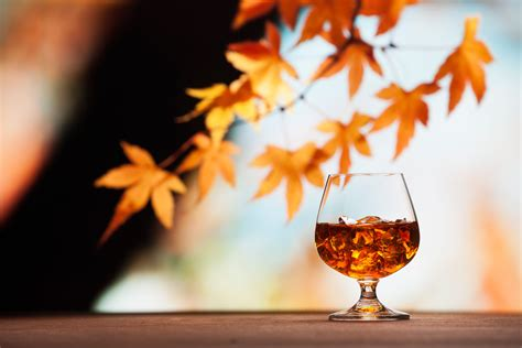 autumn cocktails you need to taste