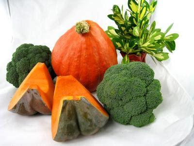 recette cuisine fenouil légumes fiche légumes et recettes de légumes sur