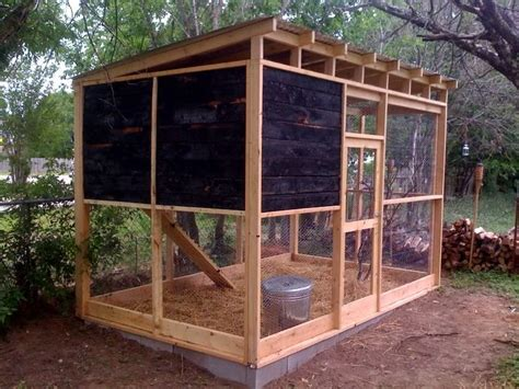Backyard Chickens Medium Coop