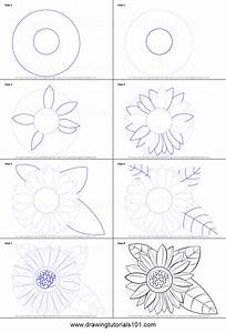 How to Draw a Sunflower printable step by step drawing ...