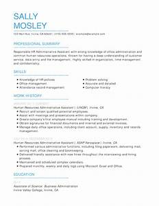 skill based resume templates free resume templates easy to customize online templates