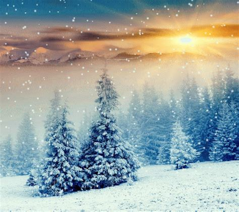snowfall  sunset pictures   images
