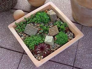 mini zen garten anlegen spinjoinfo With französischer balkon mit miniatur zen garten