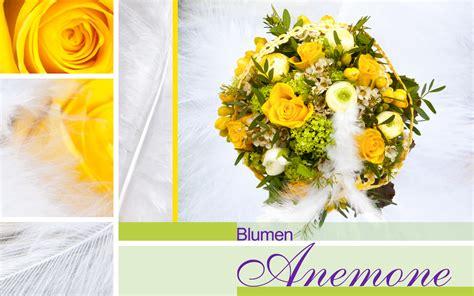 Blumenladen München Schwabing by Blumenladen Mnchen Schwabing Ausgewhlte Arbeiten