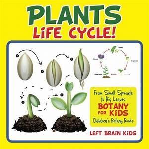 Free Montessori Botany Materials For A Gardening Unit