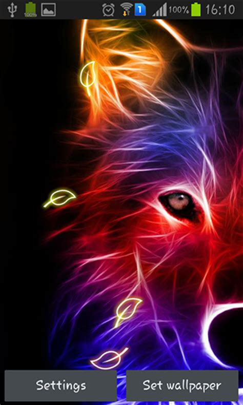 wolf  wallpaper  android wolf