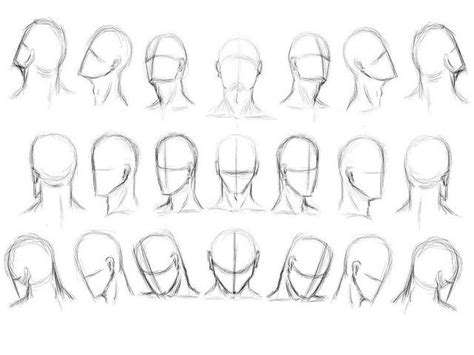 head tilted  reference drawing  human head drawing