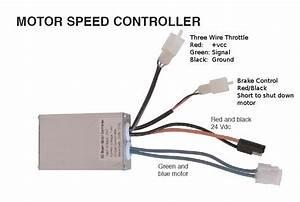 Scooter Stator Wiring Diagram