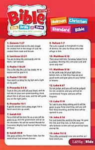 Bible Skills, Drills, & Thrills: Red Cycle - HCSB Verse ...