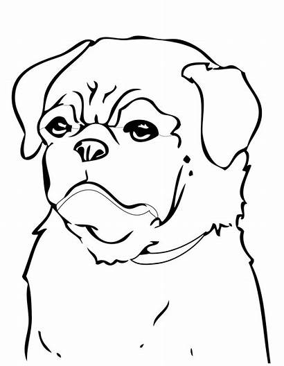 Coloring Dog Pages Dogs Pug Printable Minecraft