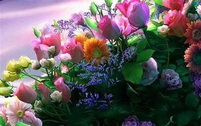 Flowers Desktop Wallpapers Bouquets Flower Rose Latest