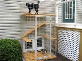 cat patio dartmouth scotia 187 home of habitat