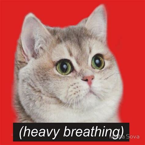 Heavy Breathing Meme - heavy breathing meme 28 images memes heavy images heavy breathing make a meme fat cat