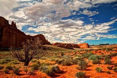Desert Landscape Utah Usa National Arches Park