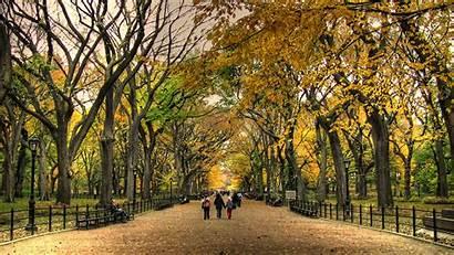 Autumn Park Central Wallpapers Desktop Widescreen