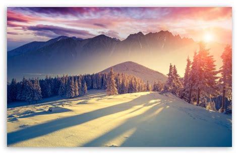 Sunset Winter Shadows 4k Hd Desktop Wallpaper For 4k Ultra