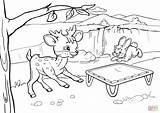 Trampoline Coloring Deer Rabbit Bouncing Pages Drawing Printable Playground Slide Pig Under Getdrawings Supercoloring sketch template