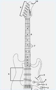 Fender Stratocaster Drawing At Getdrawings
