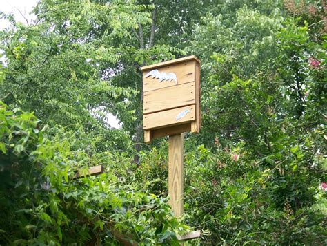 Bat Houses Natural Mosquito Control Method Garden