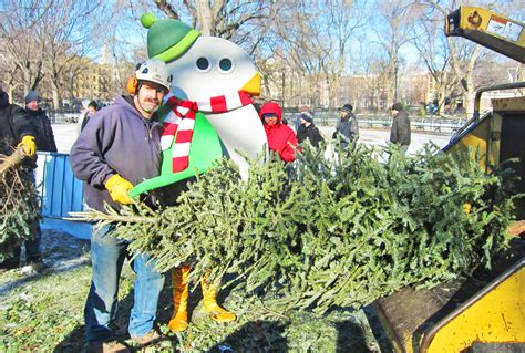 recycle your christmas tree at mulchfest 2017 mulchfest in