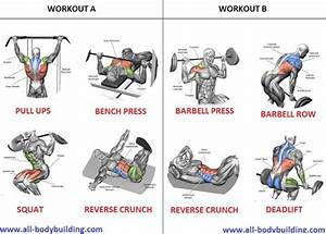 Muscle Building Workout Routine For Beginners