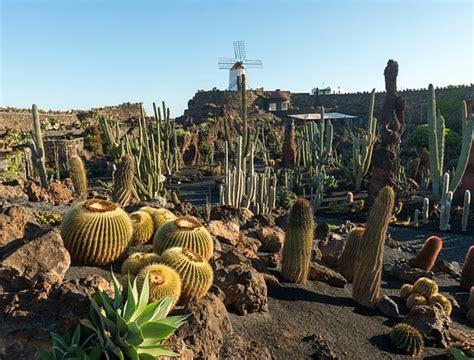 Jardín de Cactus - CACT Lanzarote