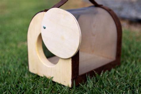 wood bug box  birchleaf designs creative toys
